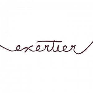 Logo Exeriter